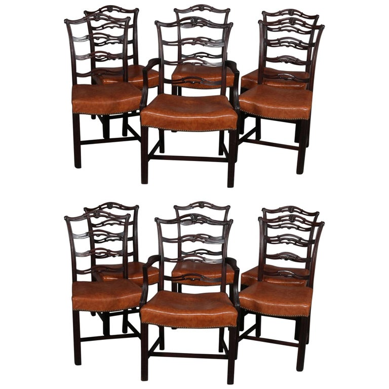 12 Antique Chippendale Style Carved Mahogany Ribbon Back Dining Chairs For Sale at 1stdibs