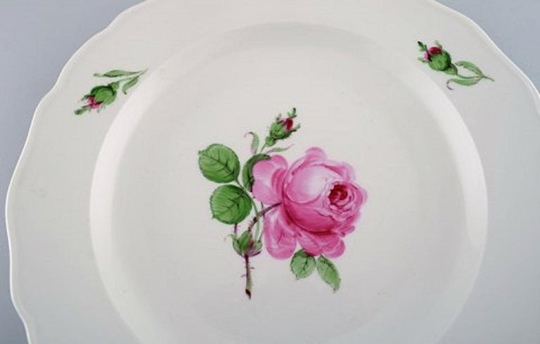 German 12 Antique Meissen Dinner Plates in Hand Painted Porcelain with Pink Roses For Sale