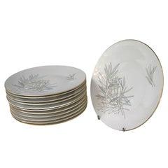 12 Raymond Loewy Mid-Century Modern Rosenthal Form 2000 Dinner Plates Grasses