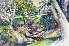 Shaded Creek Catherine McCargar Watercolor painting on paper