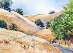 Sugarloaf Hills, Summer