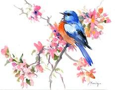 Spring, Bluebird and Sakura Blossom
