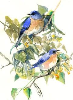 Bluebirds on Linden Tree