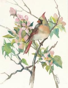 Cardinal and Apple Tree Blossom