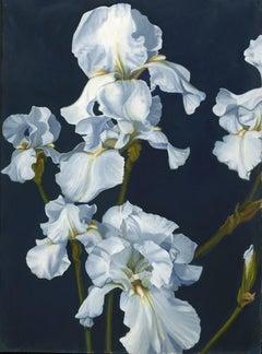 White Iris, Midnight, Painting, Oil on Wood Panel