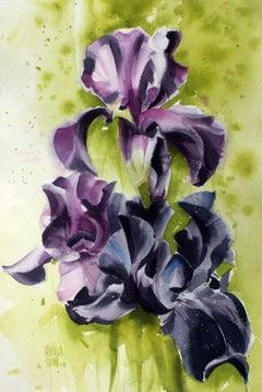 Irises - XXI century, Watercolour figurative, Flowers