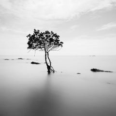 Landscape I, Thailand