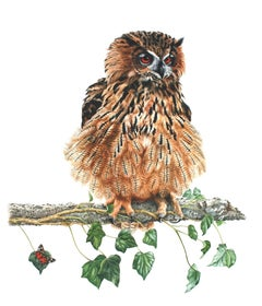 Eagle Owl, Painting, Watercolor on Paper