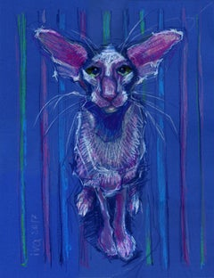 Cat, Drawing, Pastels on Paper