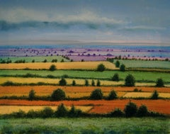 Field Colours, Painting, Acrylic on Canvas