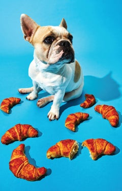 Photography Print - Pop Art - Gillie and Marc - Sachi Pup with croissants