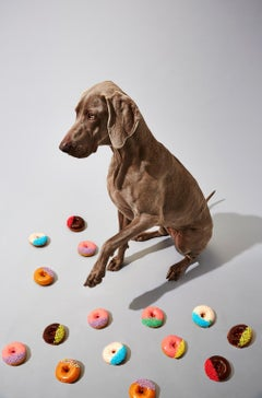Photography Print - Pop Art - Gillie and Marc - Indie Pup with donuts