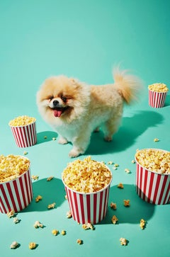 Photography Print - Pop Art - Gillie and Marc - Gucci Pup with popcorn