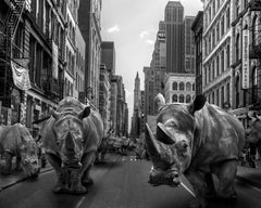 Photography Print - Art Sculpture - Gillie and Marc - Rhinos in the city
