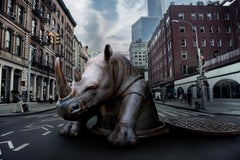 Photography Print - Public Art Sculpture - Gillie and Marc - Rhino Surprise