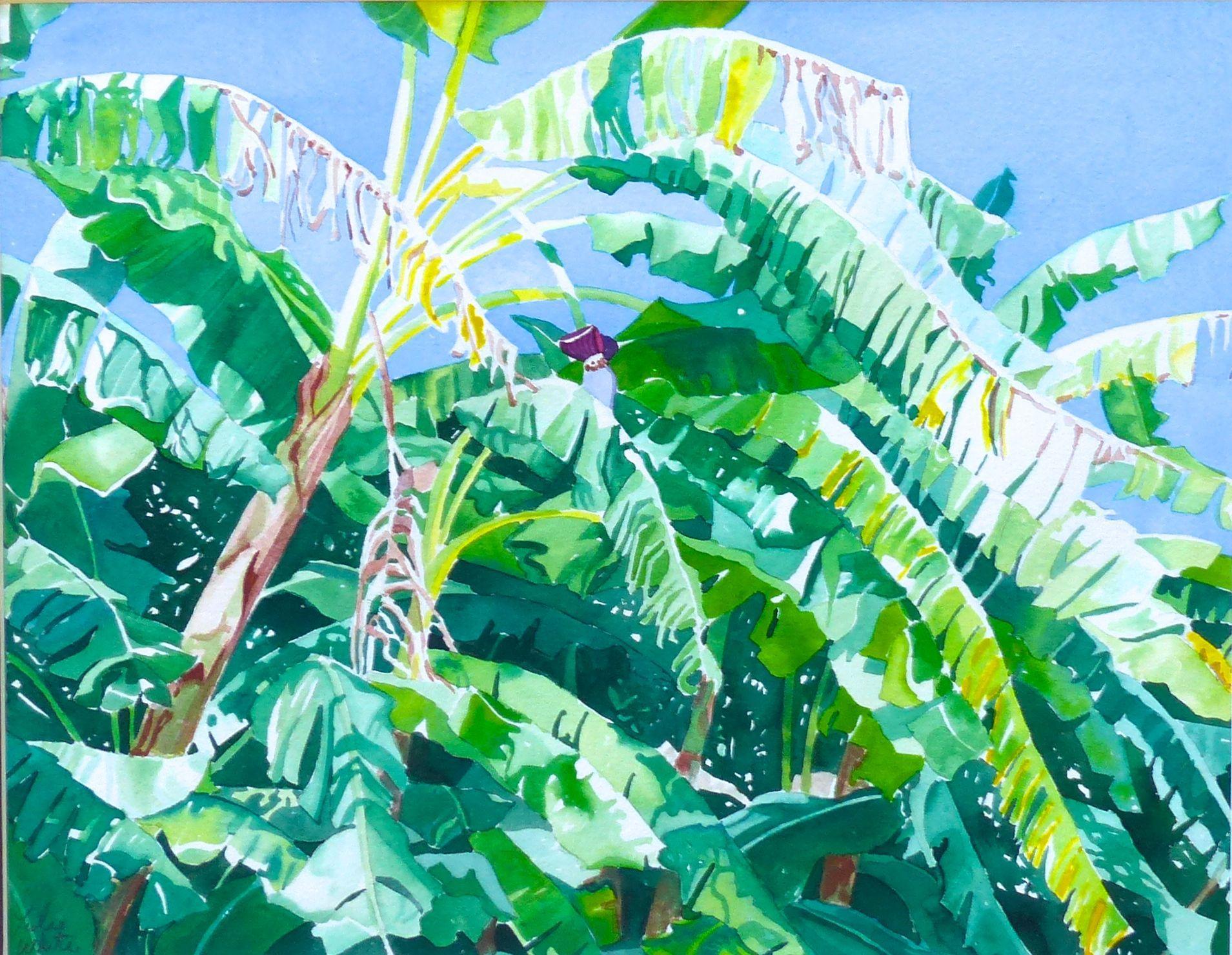 Banana Trees, Painting, Watercolor on Watercolor Paper