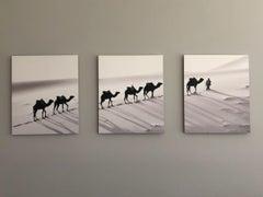 Camel Route, Photograph, Archival Ink Jet