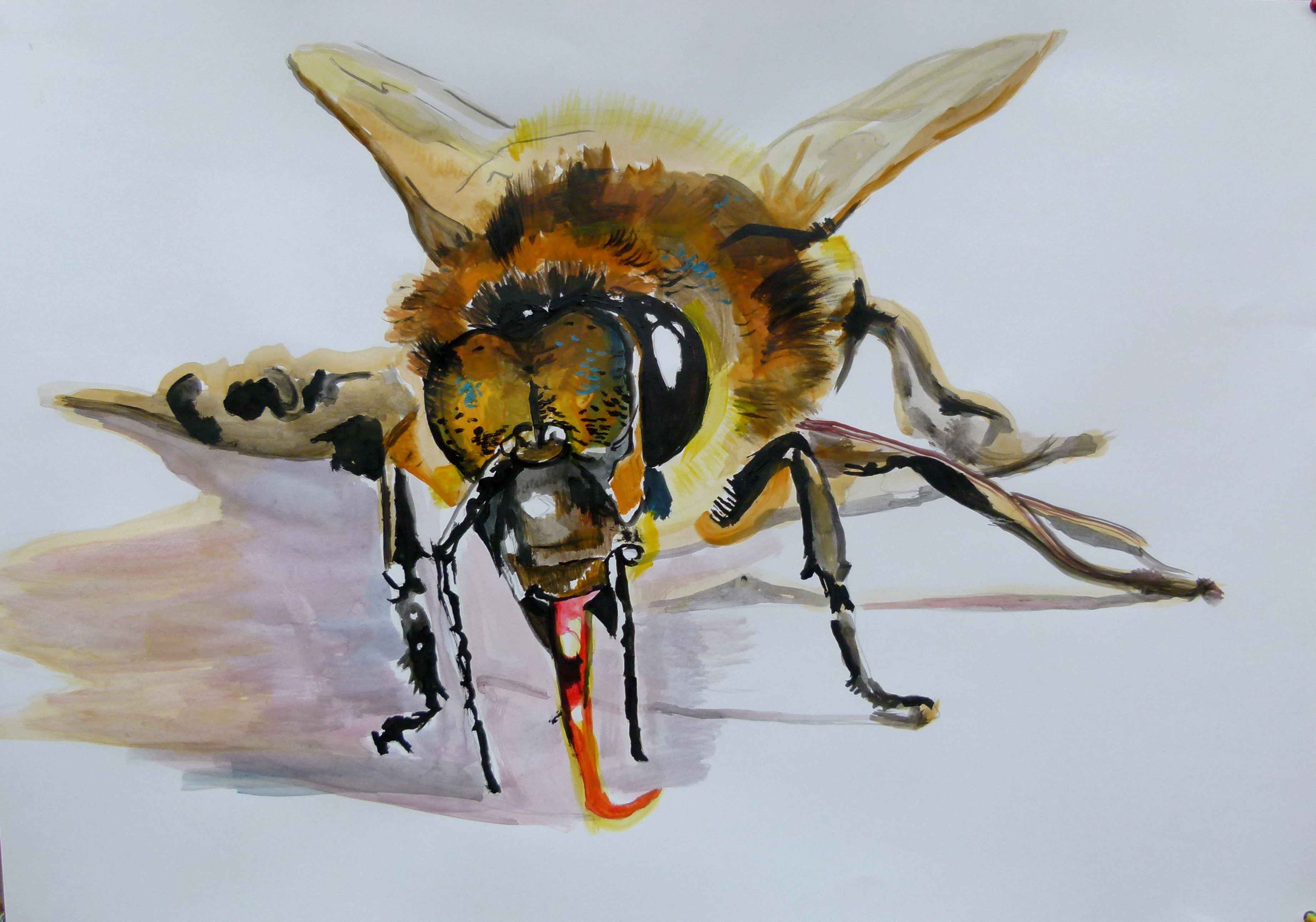 Bee, Painting, Acrylic on Paper