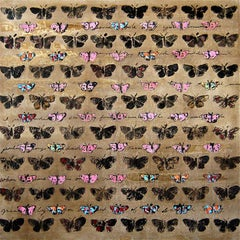 Living on 9th Street (Migration), pattern, butterfies, nature, square format