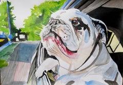Bulldog, Painting, Acrylic on Paper
