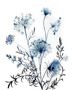 Queen Anne's Lace No. 10, Painting, Watercolor on Paper