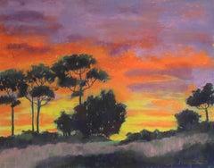 Backyard Sunrise, Painting, Pastels on Pastel Sandpaper