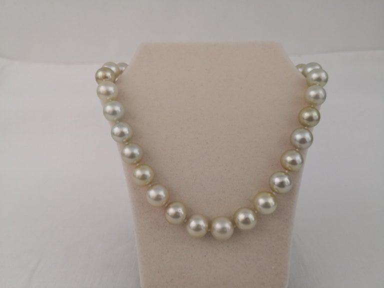 Contemporary Golden South Sea Pearl Round Shape For Sale