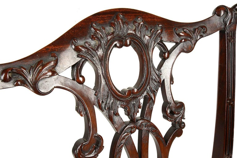 Mahogany 14 Chippendale Style 19th Century Dining Chair by Morant & Co. For Sale