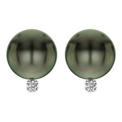 14 Karat Gold AAA Tahitian Cultured Pearls with 1/10 Carat Diamond Earrings