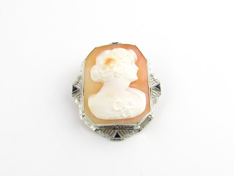 Vintage 14 Karat White Gold Cameo Brooch / Pendant  This elegant cameo features a lovely lady in profile framed in exquisite white gold filigree accented with four triangle cut sapphires. Can be worn as a brooch or a pendant.  Size: 38 mm x 33