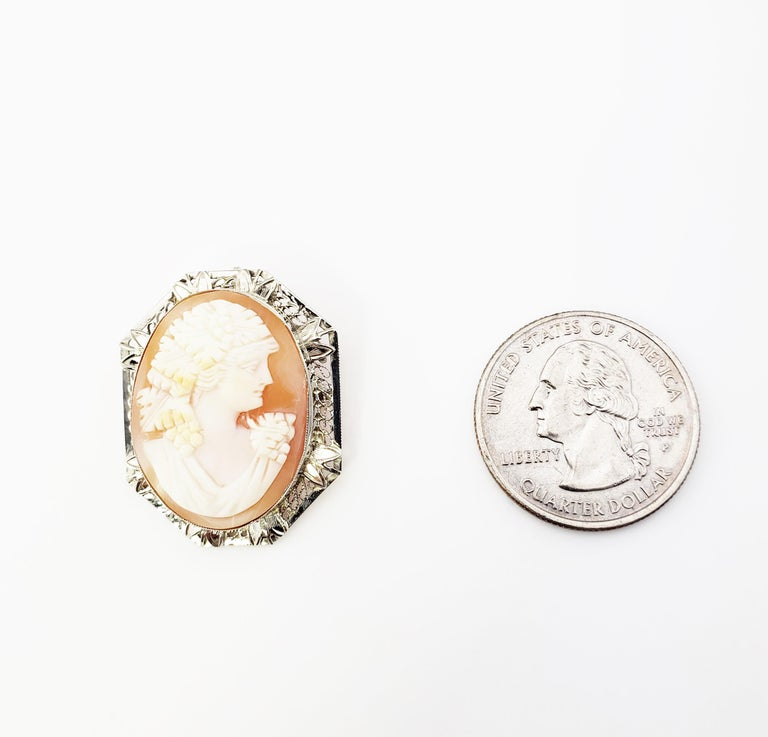 14 Karat White Gold Cameo Brooch / Pendant For Sale 5