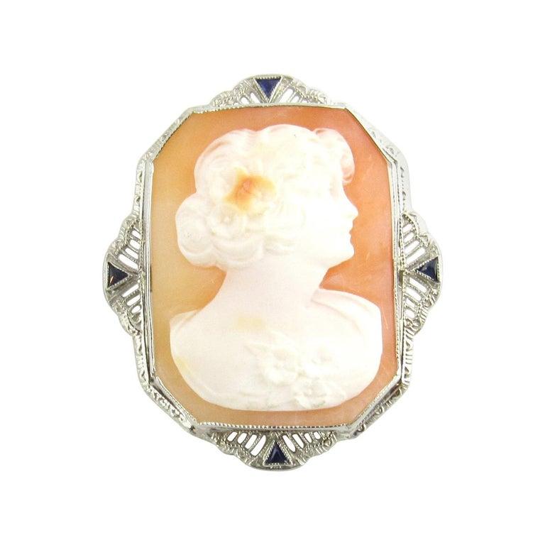 14 Karat White Gold Cameo Brooch / Pendant For Sale