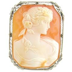 14 Karat White Gold Cameo Brooch or Pendant