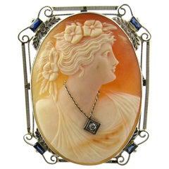 14 Karat White Gold Diamond Sapphire Cameo Brooch Pendant