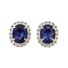 14 Karat White Gold Oval Blue Sapphire and Diamonds Halo Earrings '3 Carat'