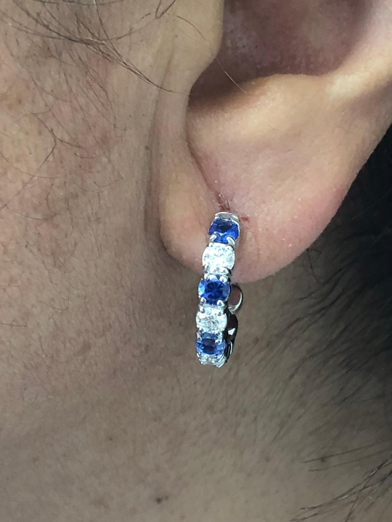 Women's 14 Karat White Gold Sapphire/Diamond Huggies 20 Pointers For Sale