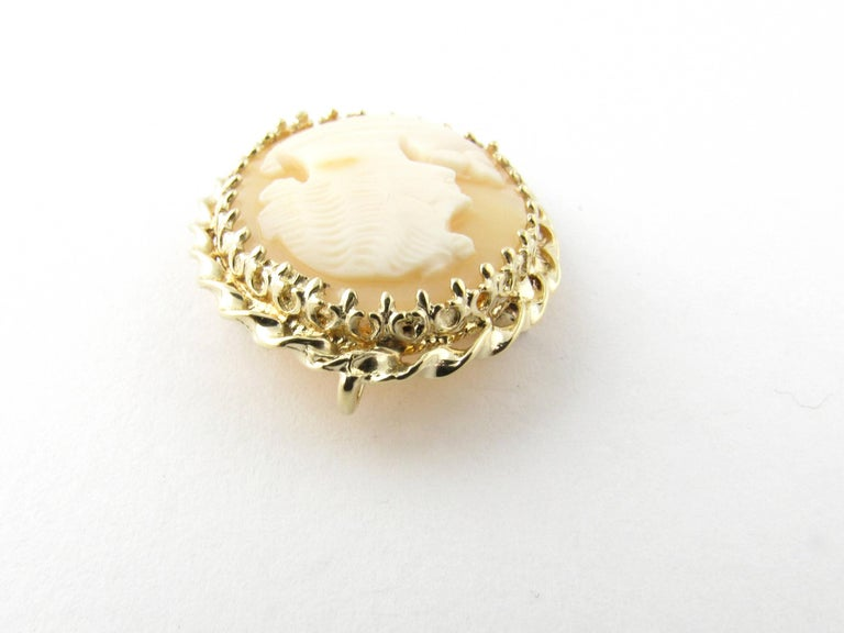 14 Karat Yellow Gold Cameo Brooch/Pendant For Sale 1