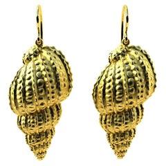 14 Karat Yellow Gold Polka Dot Shell Earrings