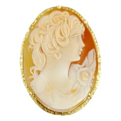 14 Karat Yellow Gold Shell Oval Cameo Pin and Pendant