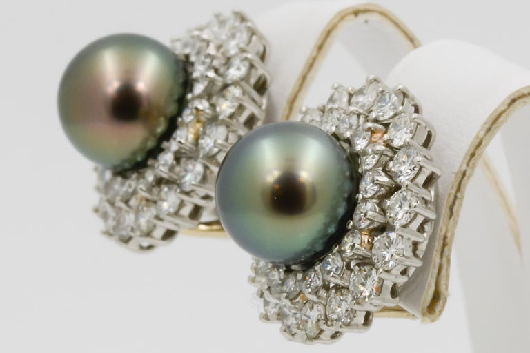 14 Karat White Gold Black South Sea Pearl and Diamond Earrings For Sale 1