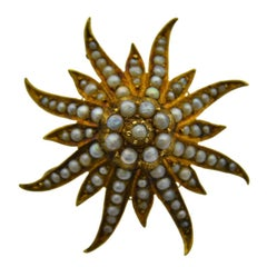 14 Karat Solid Yellow Gold Sea Anemone, Starfish or the Sun