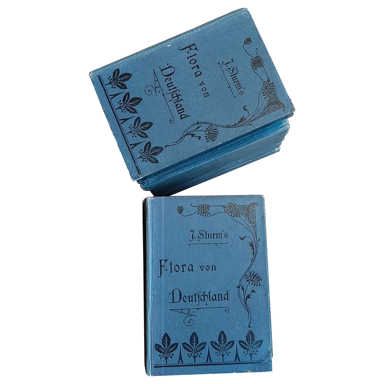 15 Volumes of 'Flora van Deutschland' by J. Sturm, 1906-1907