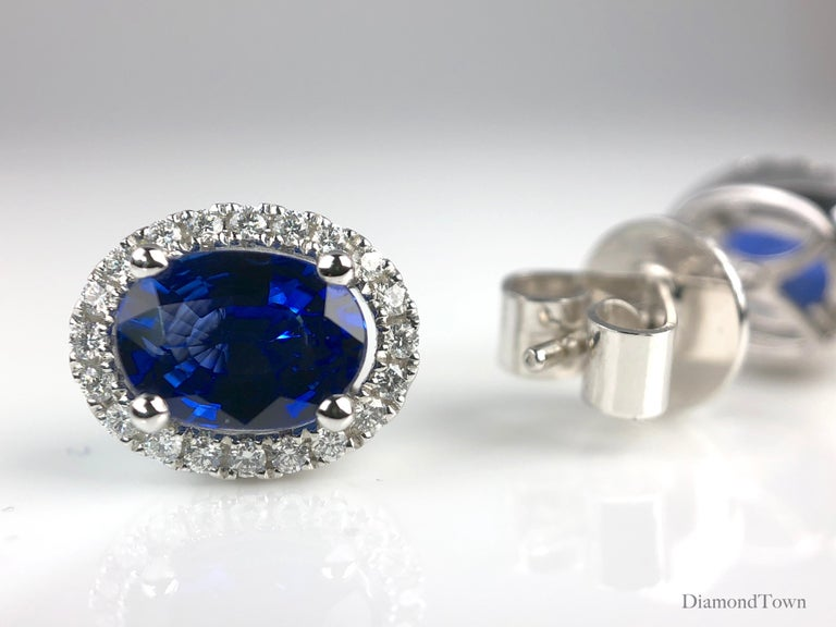 1.65 Carat Oval Cut Blue Sapphire Earrings with Diamond Halo in 18k White Gold In New Condition For Sale In New York, NY
