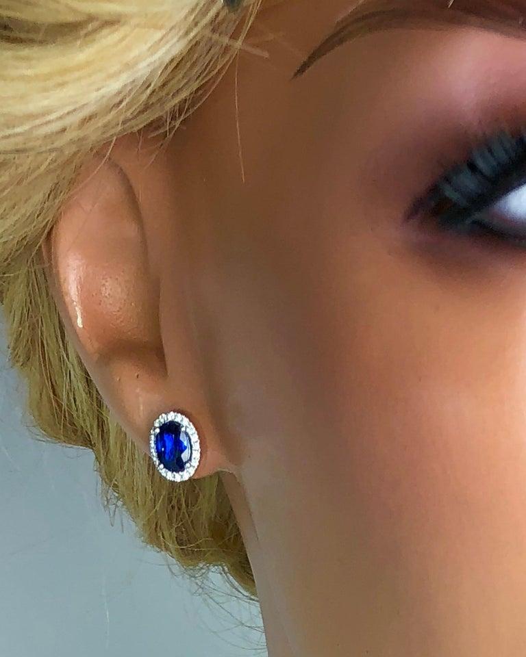 Women's 1.65 Carat Oval Cut Blue Sapphire Earrings with Diamond Halo in 18k White Gold For Sale