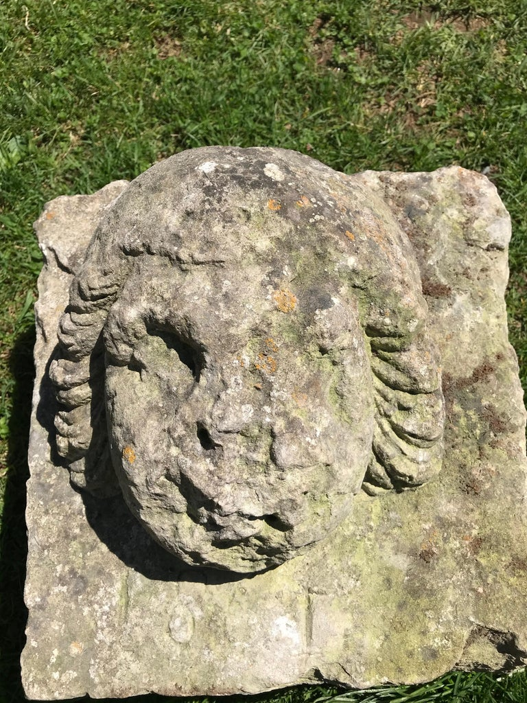 Hand-Carved 16th Century Weathered French Hand Carved Limestone Cherub Head For Sale