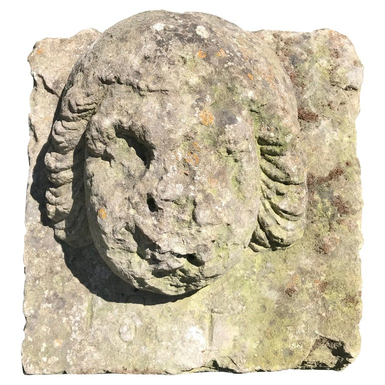 16th Century Weathered French Hand Carved Limestone Cherub Head For Sale