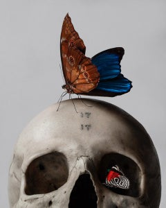 """""""Skull & Butterfly"""" Original Fine Art Print Edition of 5 by Mario Kroes"""