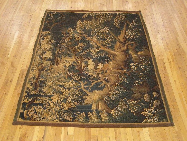A Flemish verdure landscape tapestry from the 17th century, with a large old tree at right as the most prominent feature of a lush woodlands scene full of various trees, bushes, and plants. Enclosed within a pair of narrow monochromatic guard
