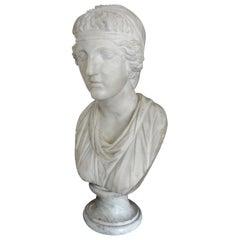 17th Century Italian Carrara Marble Bust of a Classical Roman