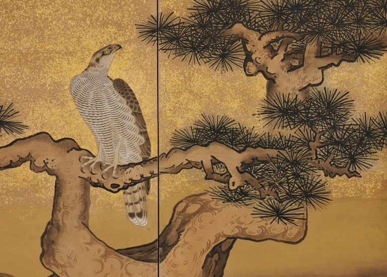 Edo 17th Century Japanese Screen Pair by Soga Nichokuan, Hawks on Pine & Plum Trees For Sale